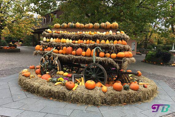 Tripsdrill Freizeitpark Erlebnispark Herbstdeko Kürbisse