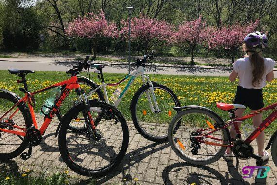 Fahrrad Tour Pause Wiese Bäume Natur