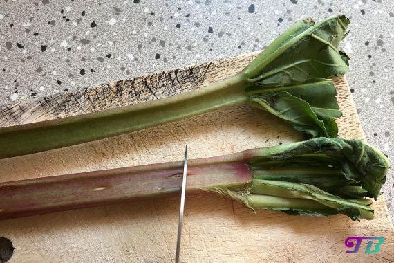 Kompott Rhabarber Blätter entfernen
