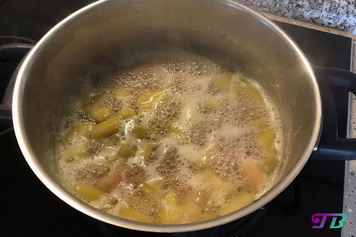 Kompott Rhabarber kochen