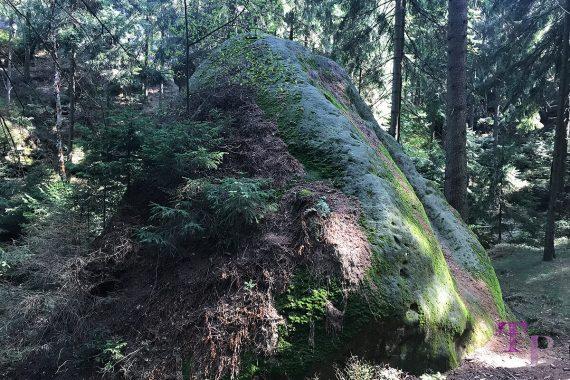 Affensteine Sächsische Schweiz Fels Stein Moos