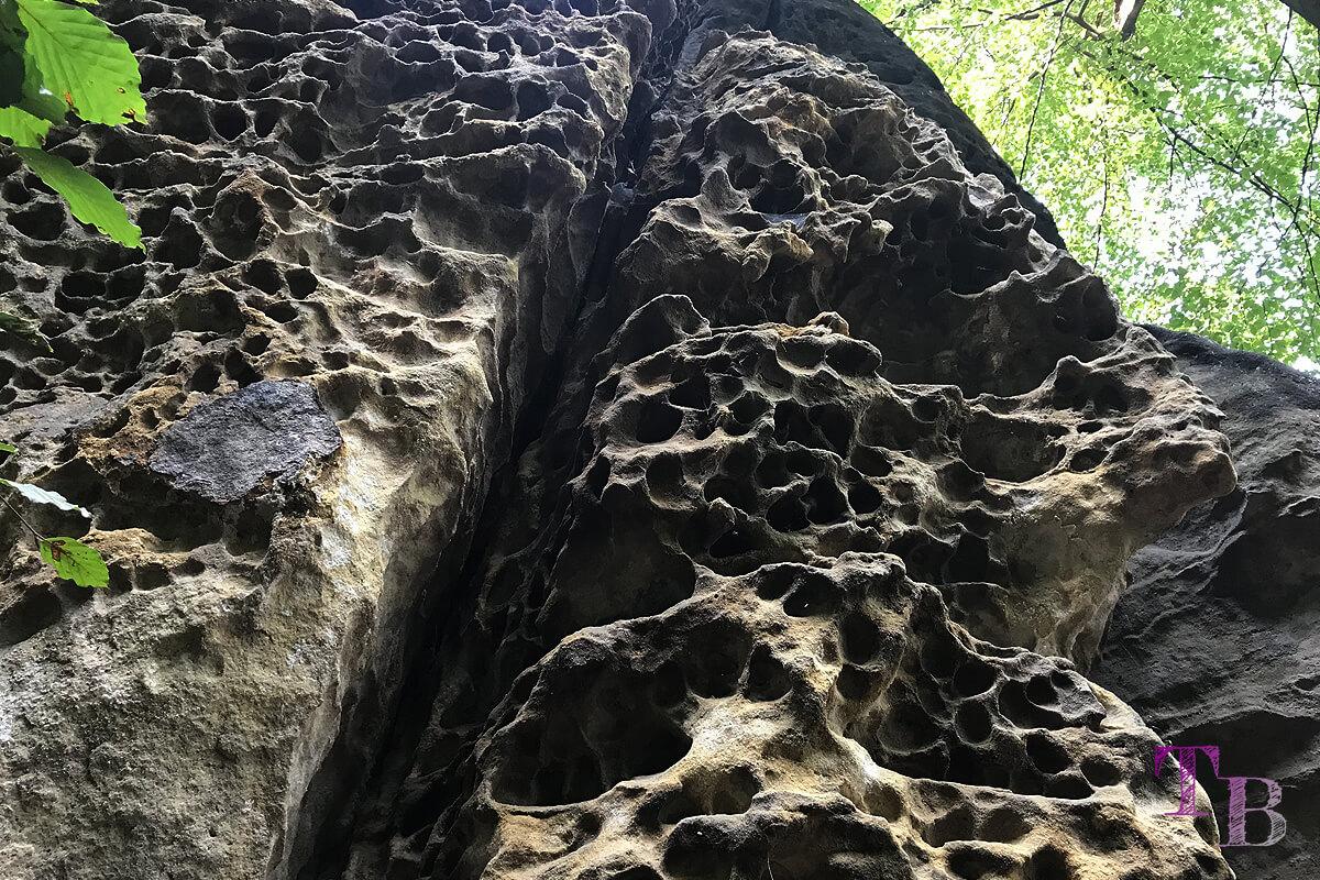 Affensteine Sächsische Schweiz Felsen Auswaschung Löcher