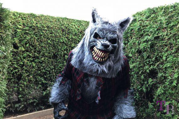Irrgarten Kleinwelka Geisternacht 2018 Wolf