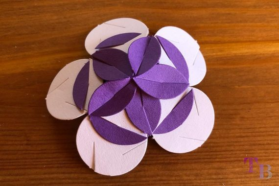 Fancy Shapes Blütenlinse Vorderseite